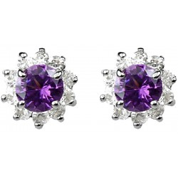 Purple Round Rhinestone Clear Diamante Cluster Halo Stud Earrings