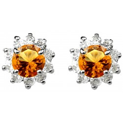 Amber Brown Round Rhinestone Clear Diamante Cluster Halo Stud Earrings